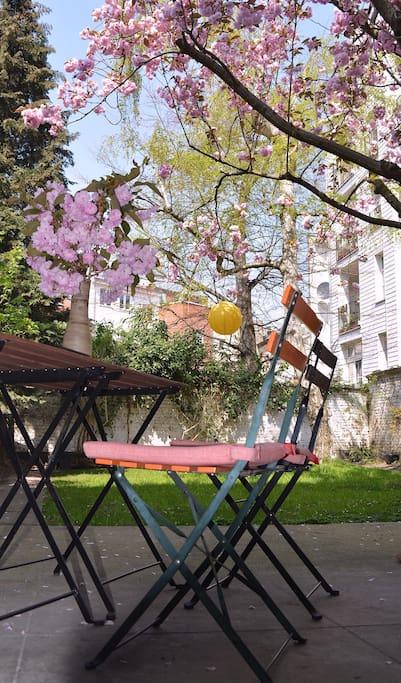 Jardin avec terrasse sous auvent