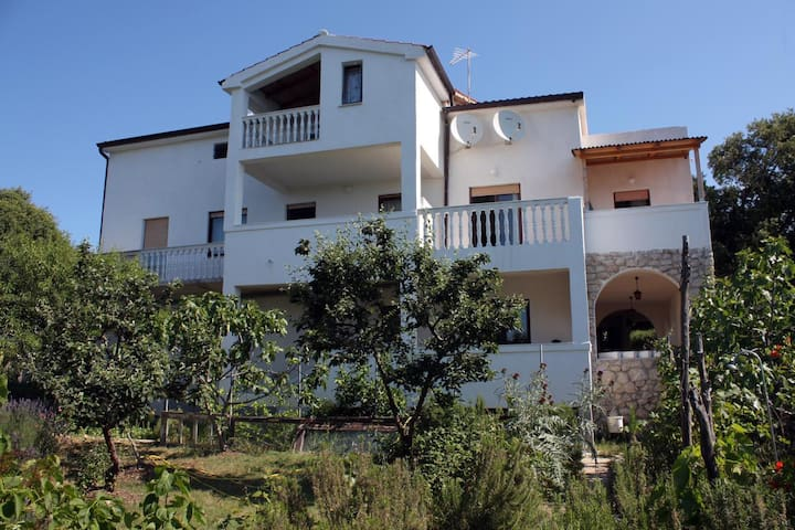 Studio flat with terrace and sea view Suha Punta (Rab) (AS-5050-a)