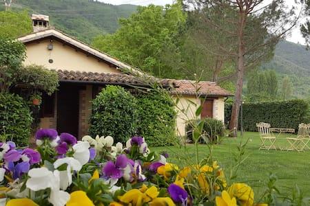 """Casale con piscina e idromassaggio:""""Casa Senape"""" - Ferentillo - บ้าน"""