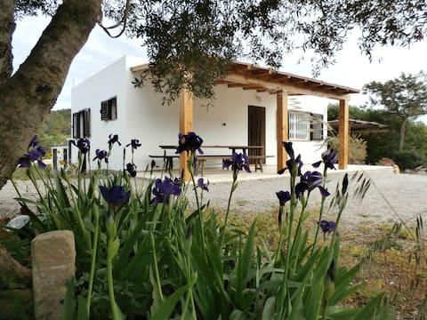 Sa Vinya Casa de Campo