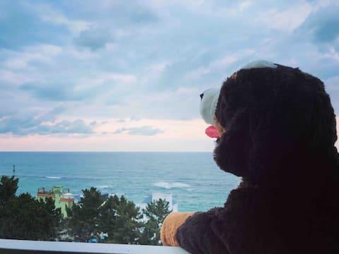 [60%할인]오션뷰 주문진 도깨비촬영지 BTS앨범사진 영진해변 달고나하우스