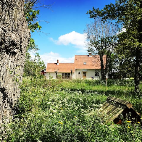 Egen liten gård i Elinghem, Ire - Lärbro - Dům