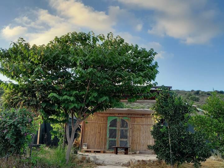 החושה בכליל | The Clil Nature Hut