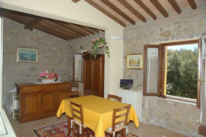 Appartamento sulle colline toscane - Pastina - Lägenhet