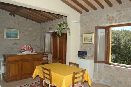 Appartamento sulle colline toscane - Pastina - Apartamento