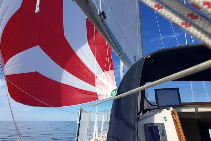 Sail away from Kingston! - Kingston - Boat
