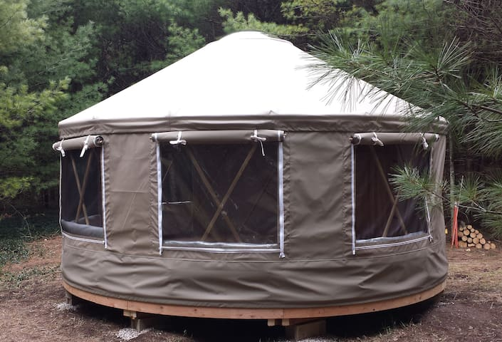 Premium yurt camping 50 acre private forest