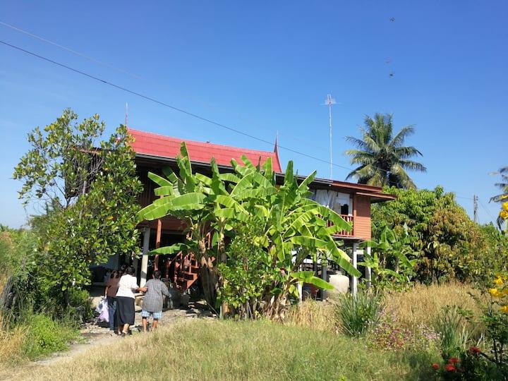 Baandab Country House, Ang Thong