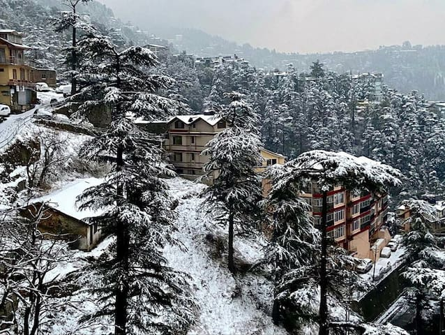 Entire Penthouse•Valley stay•Shimla•Sacred House
