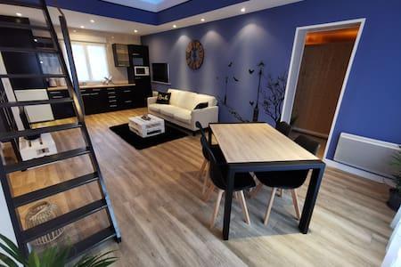 Studio 50m2, rénové avec sauna et espace extérieur