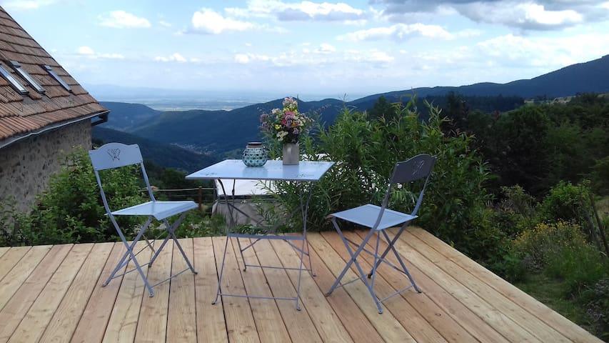 Mountain spot in Alsace
