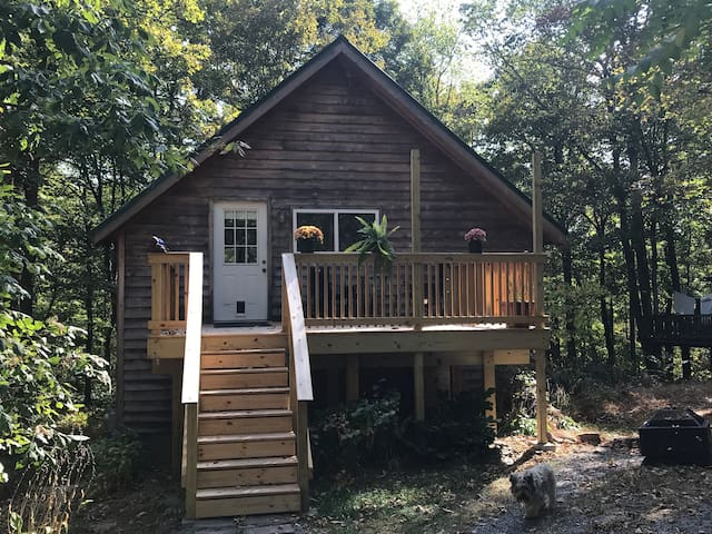 Terrapin Cabin. A sunny, quiet cabin in the woods.