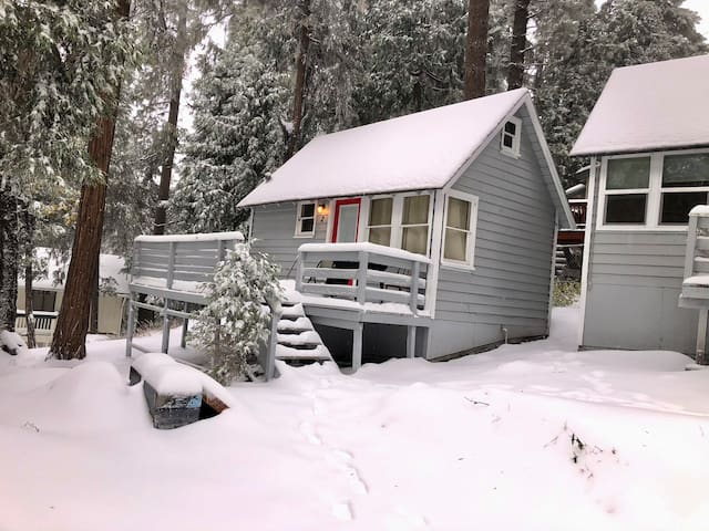 The Bear Cabins 6