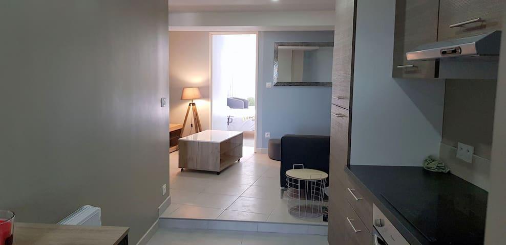 appartement entièrement rénové 2 chambres