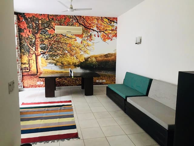 Basement - with a TT table & 2 sofa cum beds (can sleep 4 guests).
