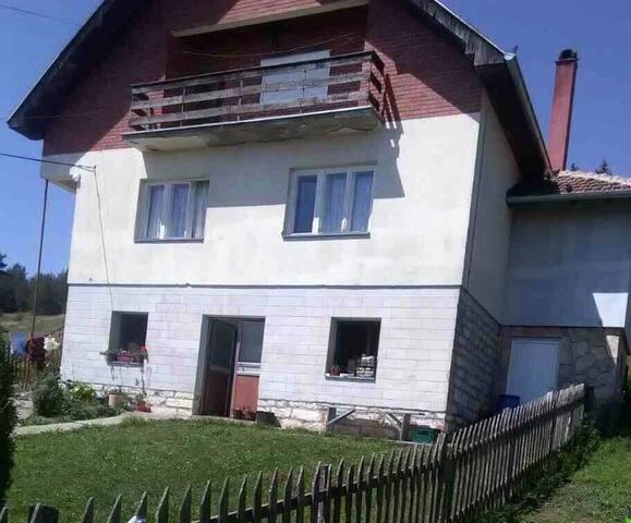 Porodična kuća Andrić, Rudno, Golija