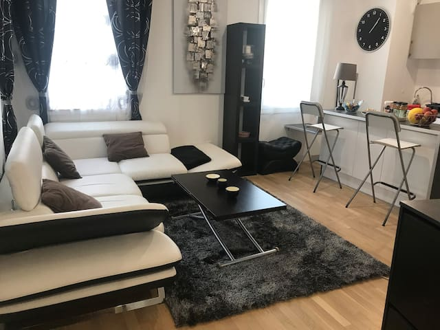 Bel appartement 50m2 Asnieres  2 chambres