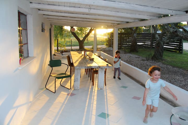 La terrasse de 30m2 ombragée avec carreaux en ciment au sol