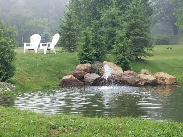 Your backyard pond oasis.