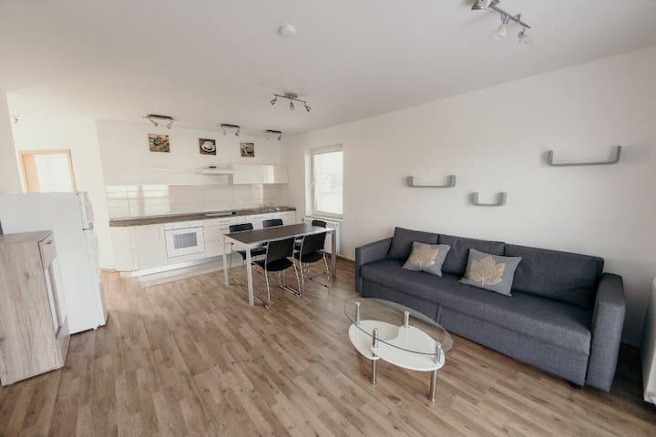 Furman Apartments apt.3