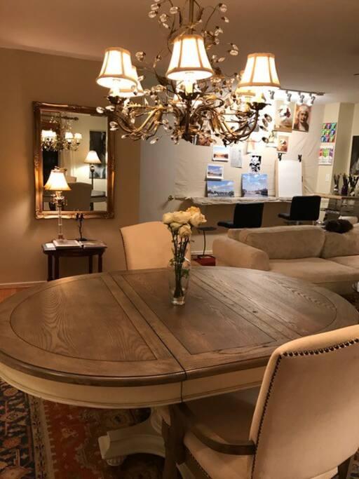 Casual Elegant Living Area