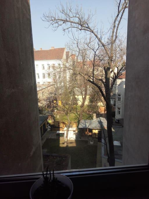 Blick vom Fenster