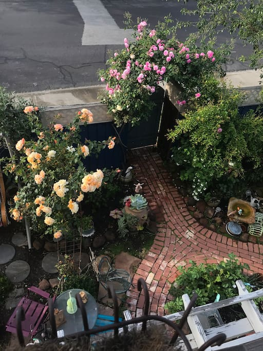 View of the side garden in May.
