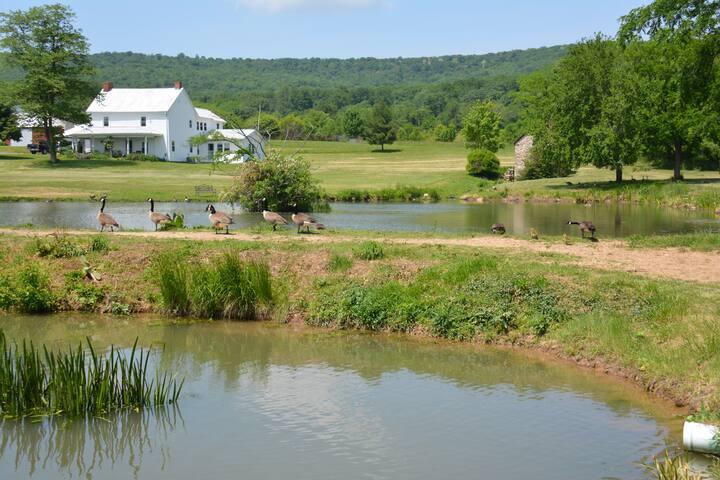 The Home Farm