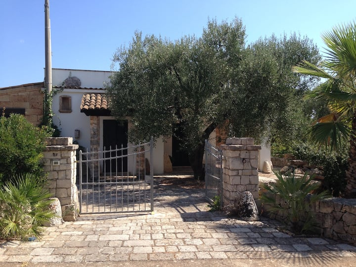 Sea n Olive - a nest among olive trees and sea