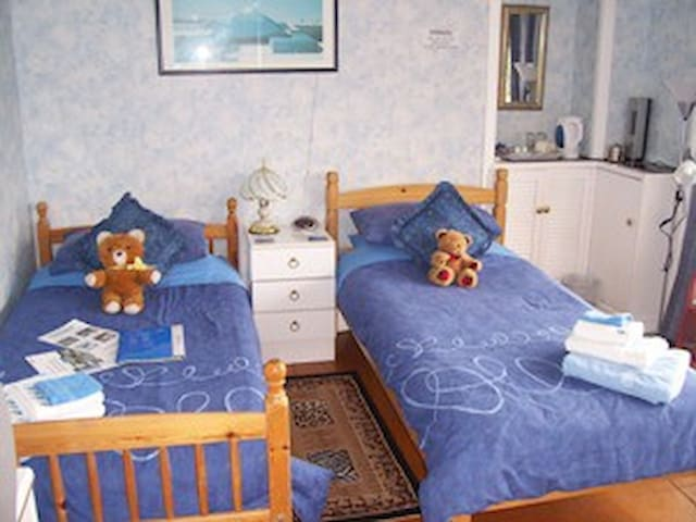 Twin en-suite room with full cooked breakfast. - Alexandria - Appartement
