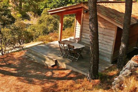 Cabane de charme, tout confort avec vue.