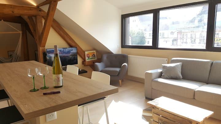 RIQUEWIHR - Maison des Vendangeurs / Le Loft !