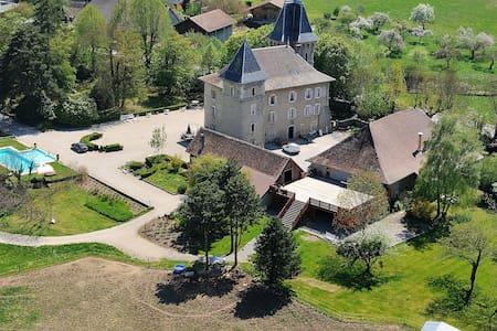 Château de Saint-Sixt - Saint-Sixt