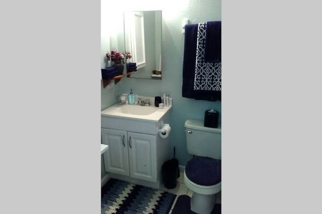 Shared bathroom between you and other airbnb guests