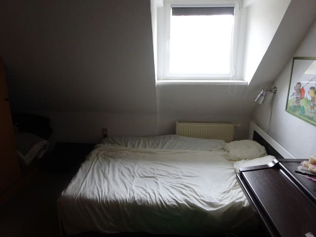 Guest Room in Trier South (free parking) - Trier - Appartement