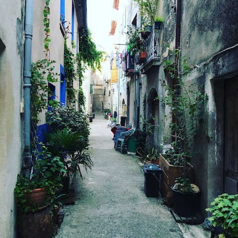Byhus i Aniane, Languedoc - Aniane - Hus