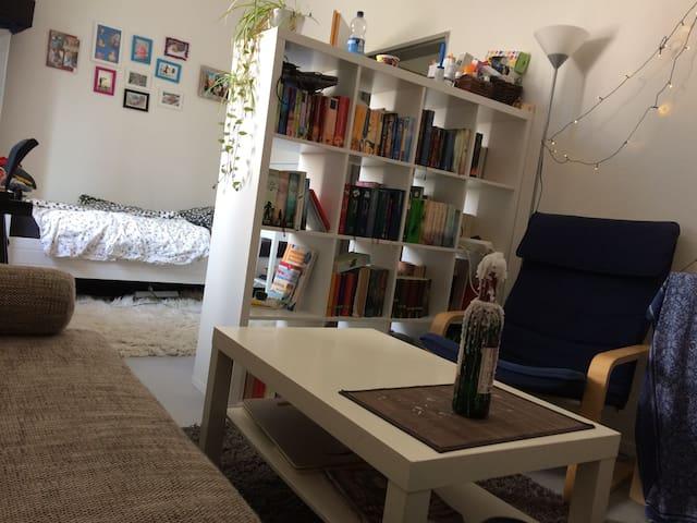 Wohnen im Franz. Viertel - Tübingen - Huoneisto