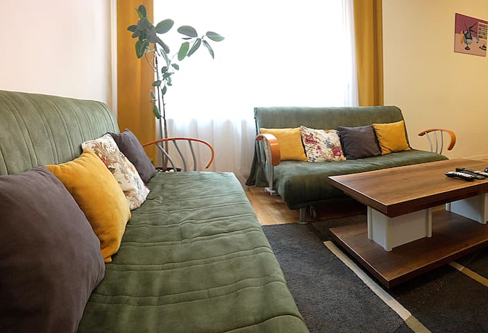 Small cute apartment ready for your comfort!