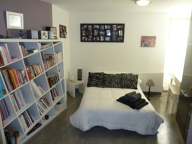 STUDIO 30m2 proche PIPA, CNPE Bugey et via rhôna - Lagnieu - Appartement