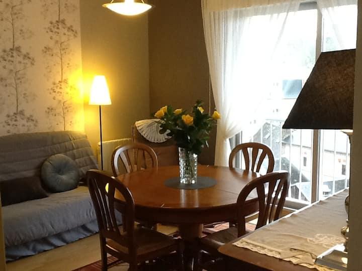 Appartement 2 pièces agréable Centre Ville