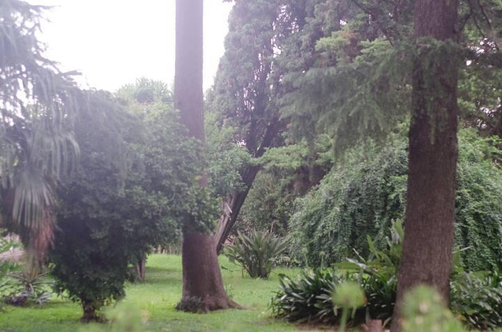 Narnia en zona sur