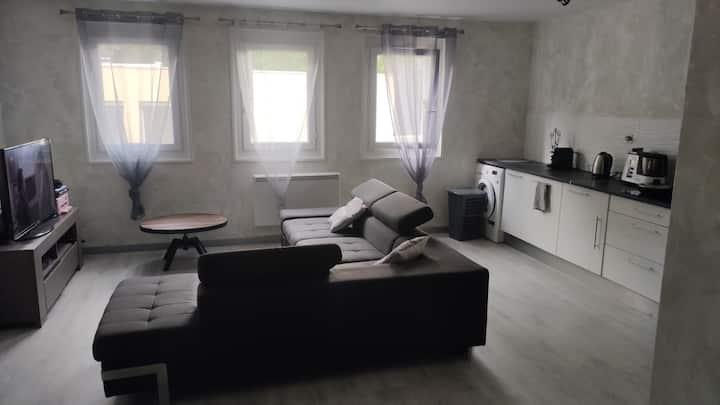 Appartement f2 rue Bergson à St Étienne.