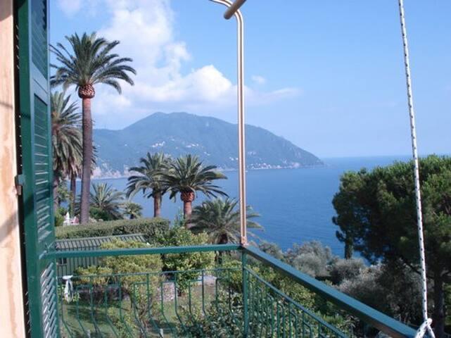 vista dal poggiolo/view from the balcony