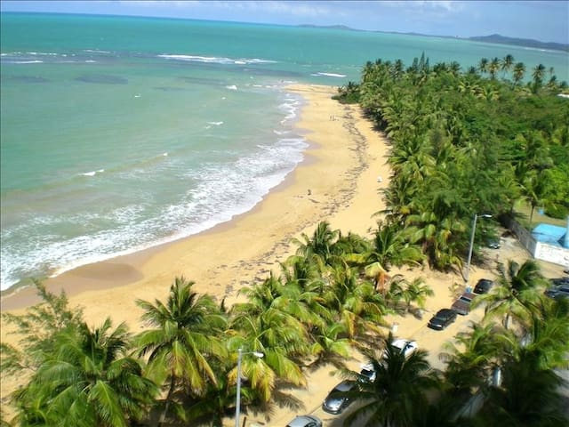 The Golden Year Vacation - Luquillo - Byt