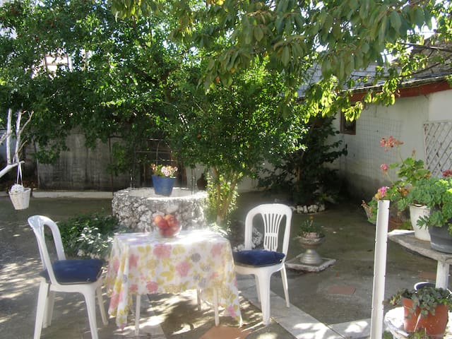 The back yard.  The garden. Shared . Enjoy your morning, your coffee, your afternoon.