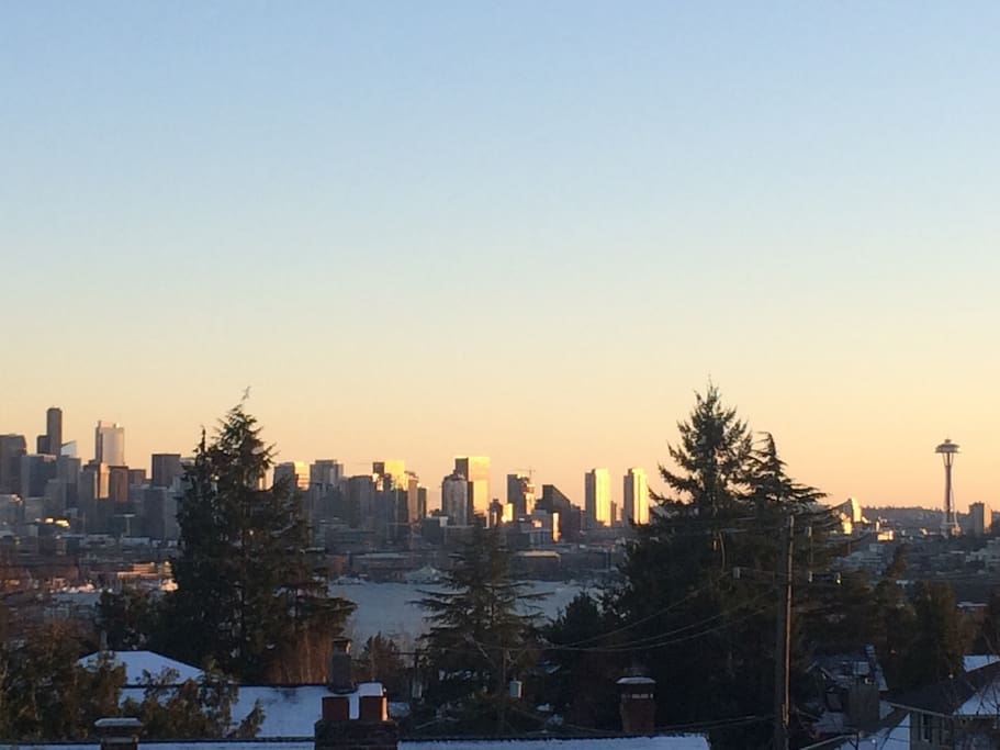View of city and Lake Union from rooftop deck