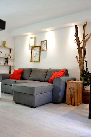 Le salon et séparé de la chambre et le canapé est convertible