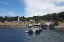When you arrive on Orcas, you don't have to search hard to find us. Serenity is among the blue cottages about 100 yards from where you disembark the ferry.