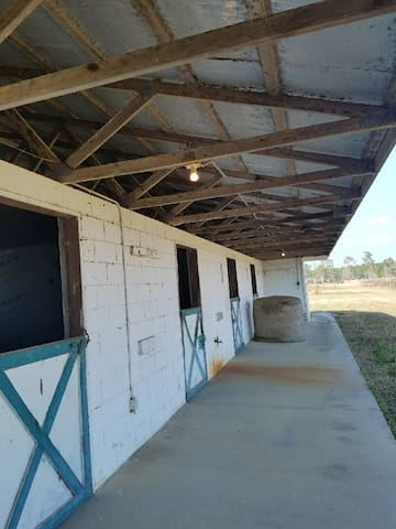 St. John's river horse farm with stables - Astor - Apartment