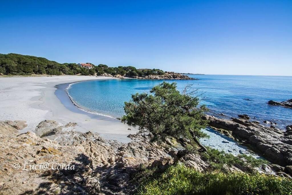 Spiaggia a 20 metri da casa